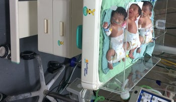 Newborn triplets in Gaza's Al-Shifa hospital. October 2017
