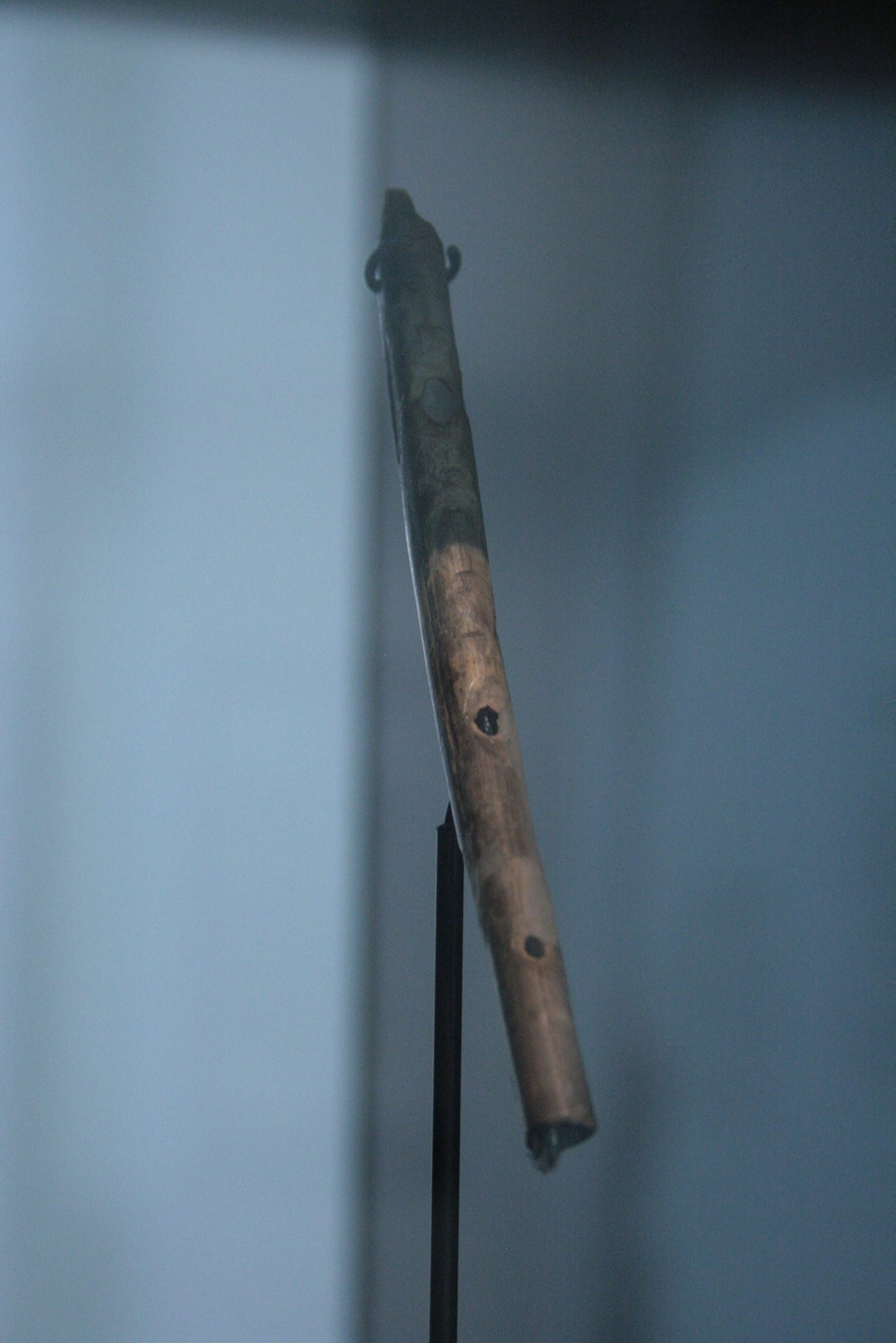 Earliest known flute, around 35,000 to 40,000 years old, Geisenklösterle cave. It is made from a vulture's wing bone perforated with five finger holes