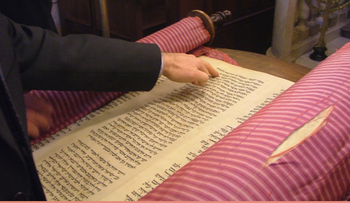 A screenshot from the Biella scroll restoration's crowdfunding page.