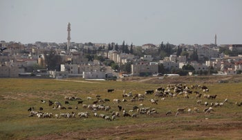 The Bedouin town of Rahat.