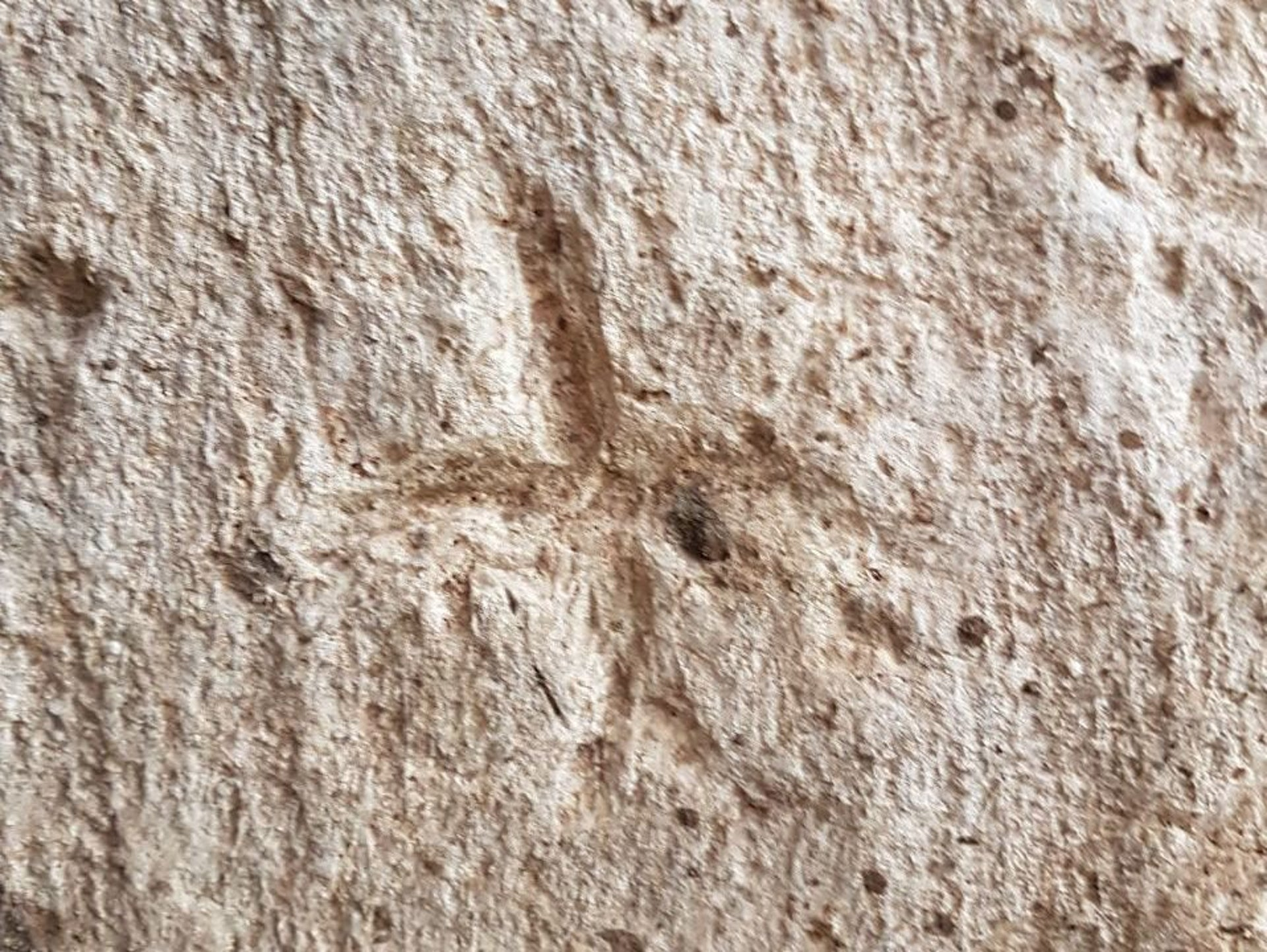 Engravings on the walls: Human figures and crosses found in the vast 2,700-year-old water system found in Rosh HaAyin