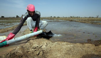 A worker adjusts a water pump hose discharging water onto a rice field in Dabua, Nigeria, March 2, 2017.