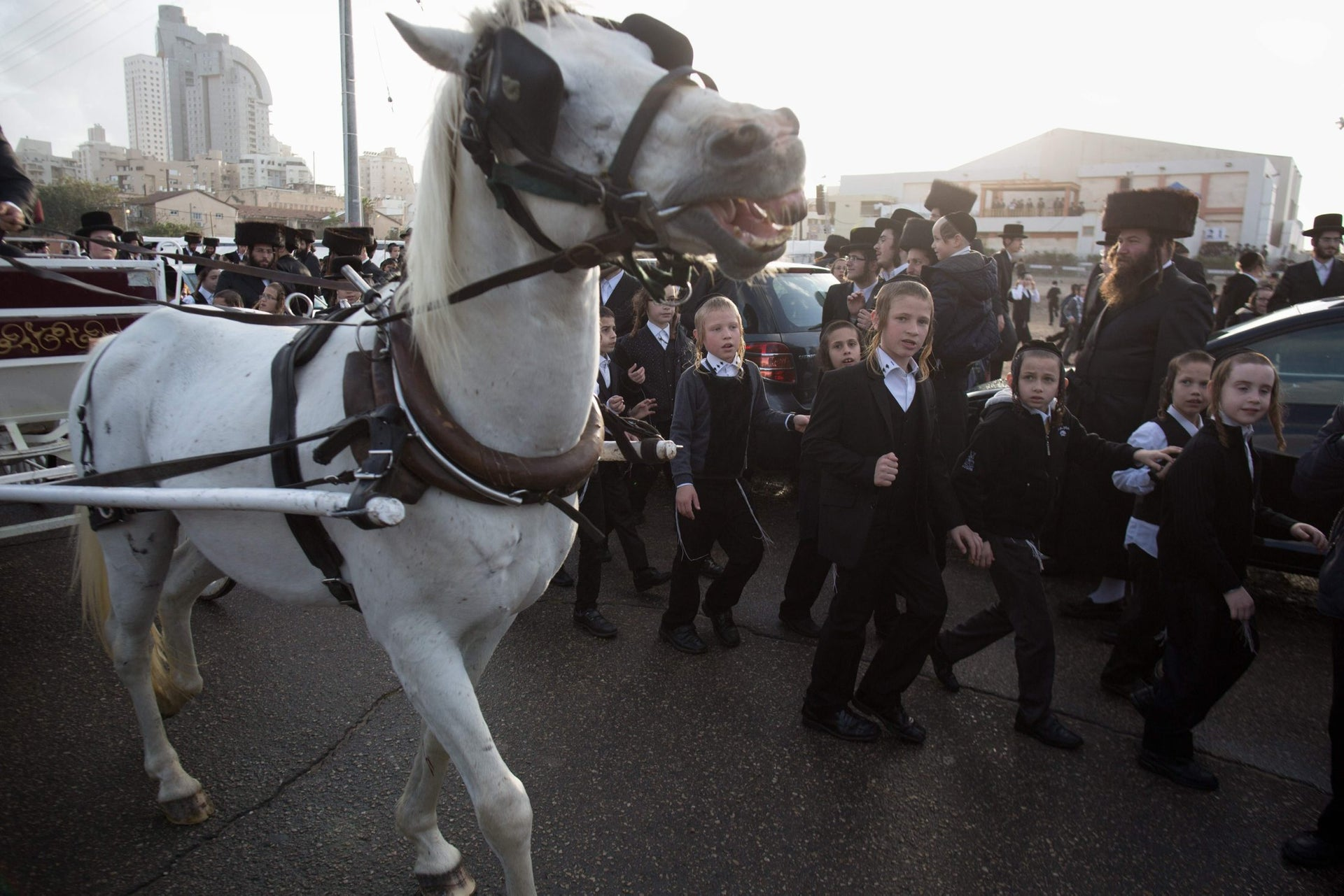 Ultra-Orthodox Jewish children run next to a horse-drawn carriage carrying Natan Meir Neta Hilbershtam, the groom from the Tzanz Hasidic dynasty, before his wedding with Parowol Mirel Lamber from the Toldos Avrohon Yitzchok Hasidic dynasty, on March 15, 2016, in the Israeli central city of Netanya.