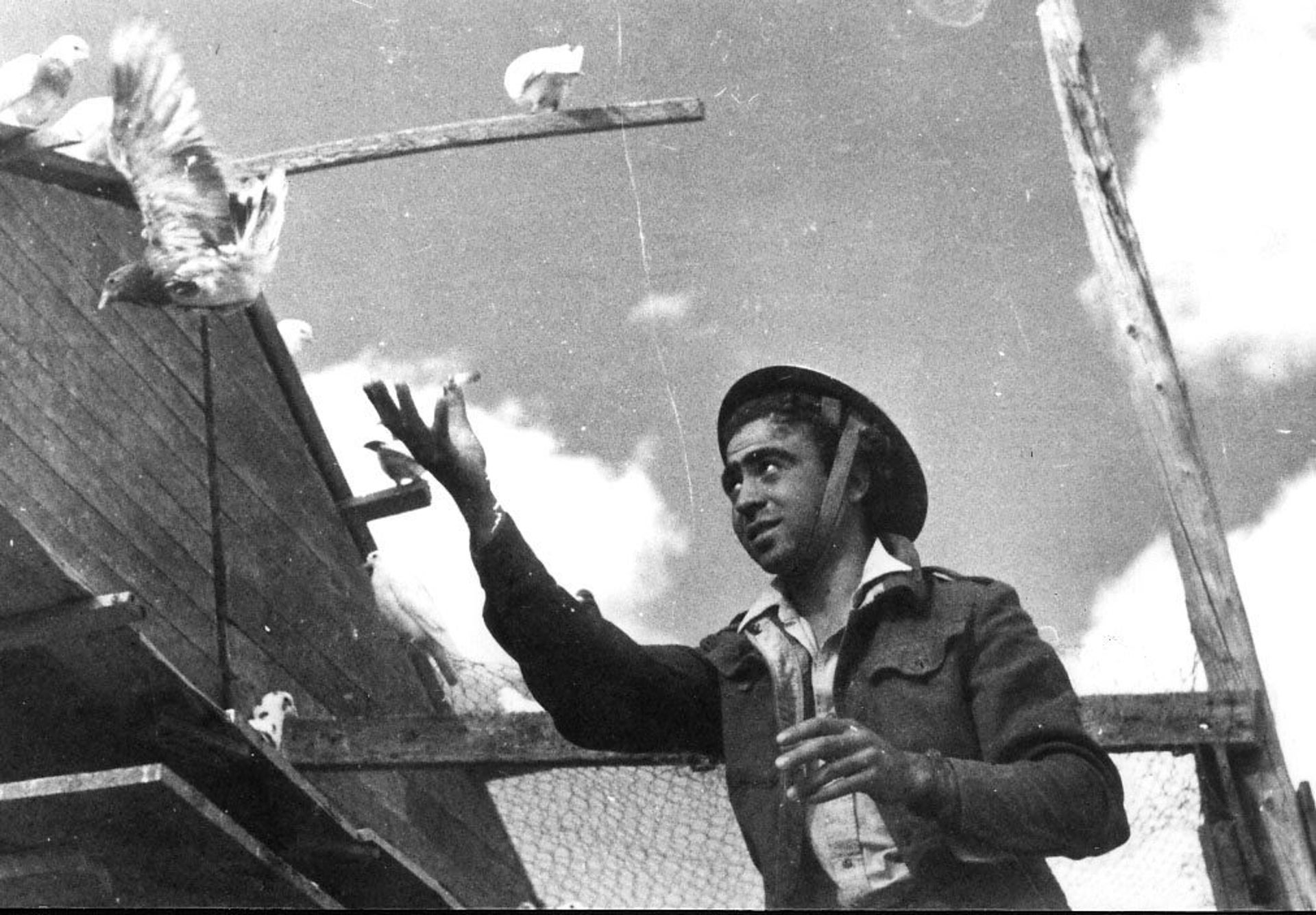 A soldier from the Signal Corps trains a messenger pigeon, 1949.