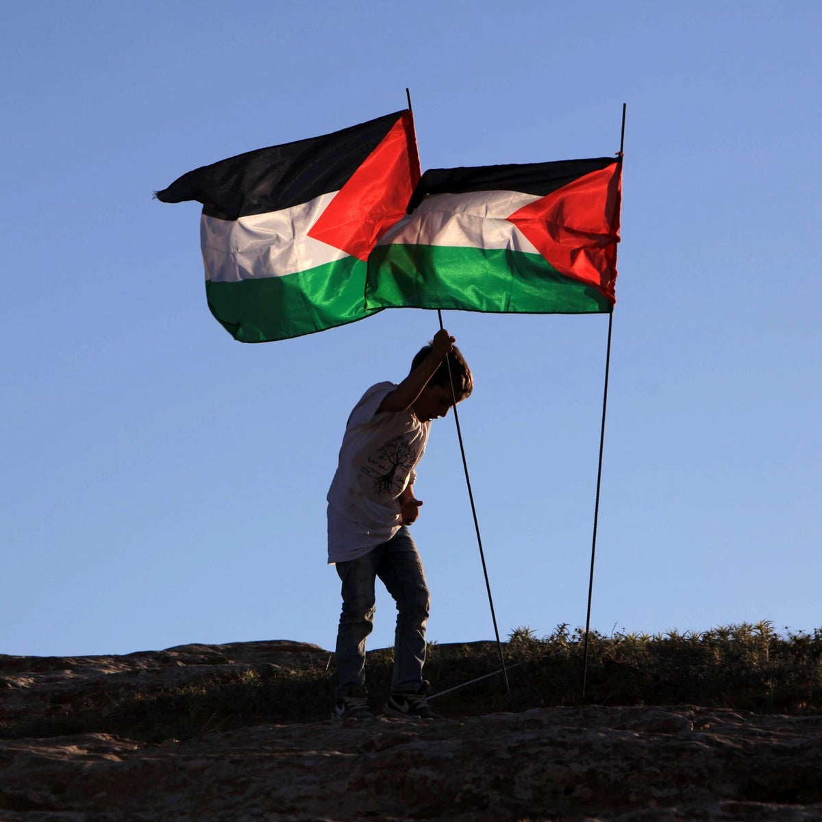 A youth flying the Palestinian flag at the Sumud Freedom Camp in the West Bank, May 25, 2017.