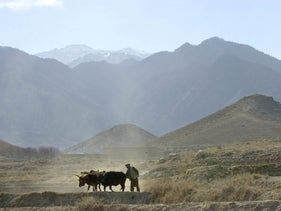 An Afghan farmer works on his field, on the outskirts of the village of Madakhel in northeastern Afghanistan, near the mountain region of Tora Bora which is seen in the background