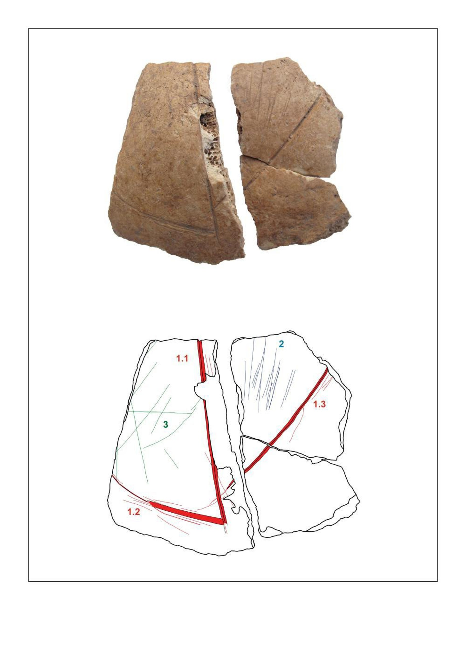 Frontal bone fragment of skull 3 with carvings (1) and cut marks (2,3).