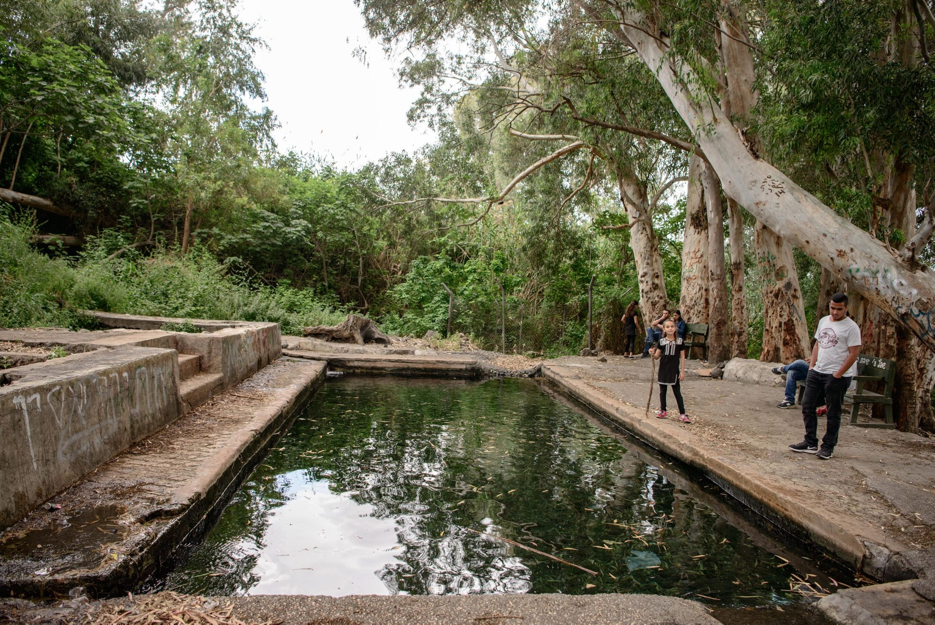 The officers' pool at Ein Almin