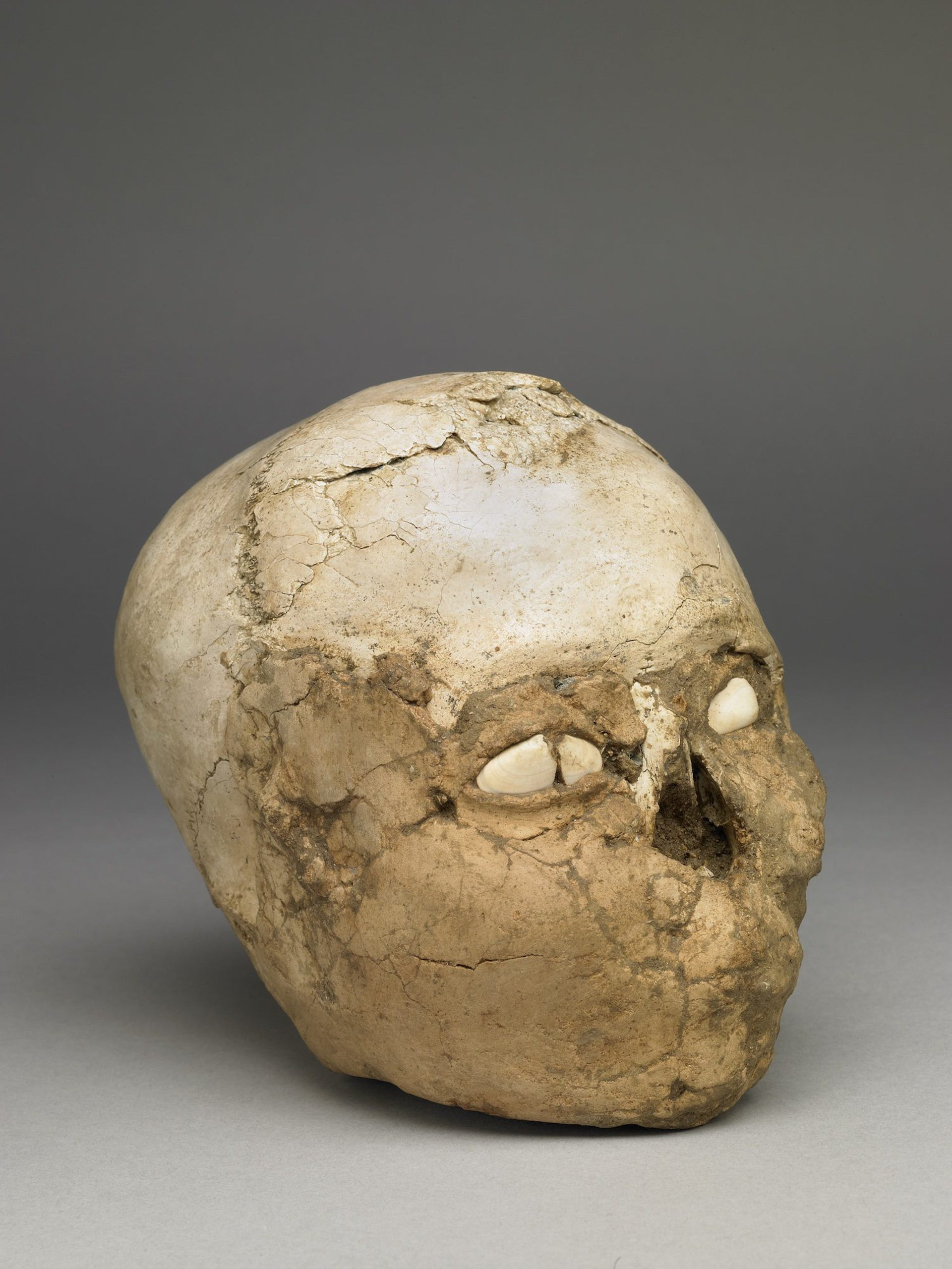 The British Museum's plastered skull, found in Jericho in 1953 and dated to around 9,500 years ago.