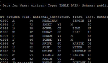 A screenshot of the leaked database (some details are blacked out)