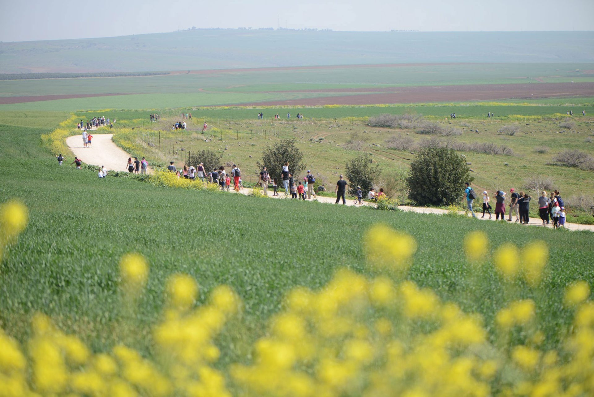 The Gilboa Walk in 2014.