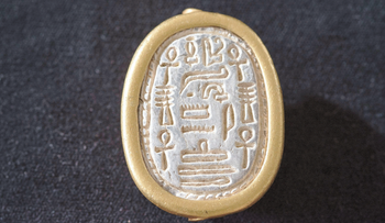 The scarab found by a birdwatcher in northern Israel.