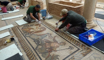 Renovating a mosaic in ancient Ephesus, showing a mythic depiction.