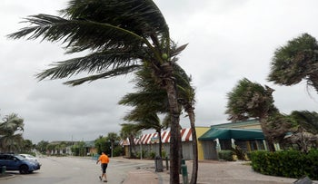 Palm trees sway in high gusts of wind as Hurricane Matthew makes a path for Florida's east coat, Vero Beach, Florida, October 6, 2016.