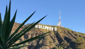 Hollywood's iconic sign is shown in Los Angeles, California, U.S. January 1, 2017 after being defaced overnight in this handout from social media.