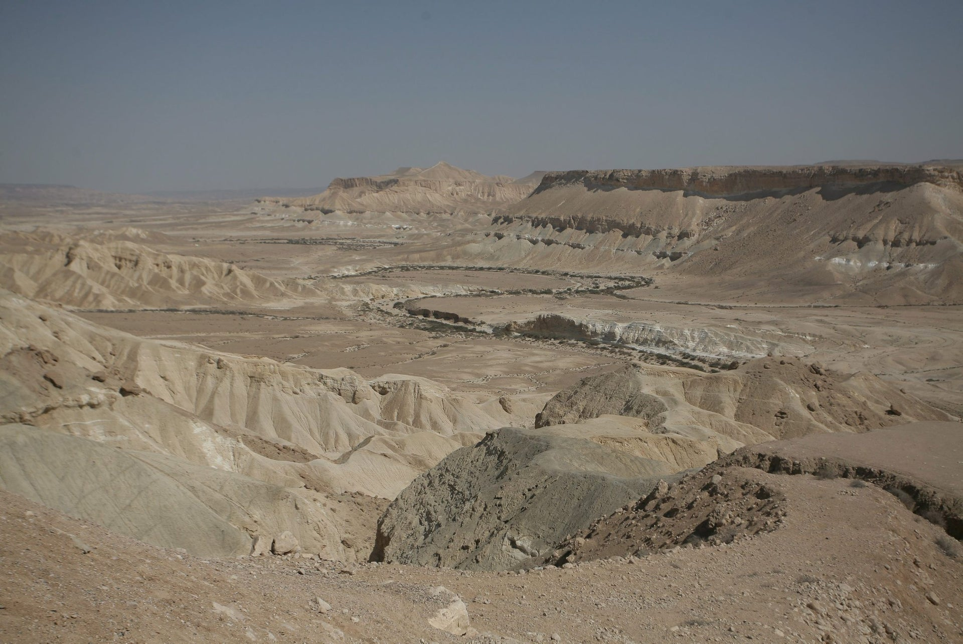 The Negev: Not a hospitable place for farmers, or jirds.