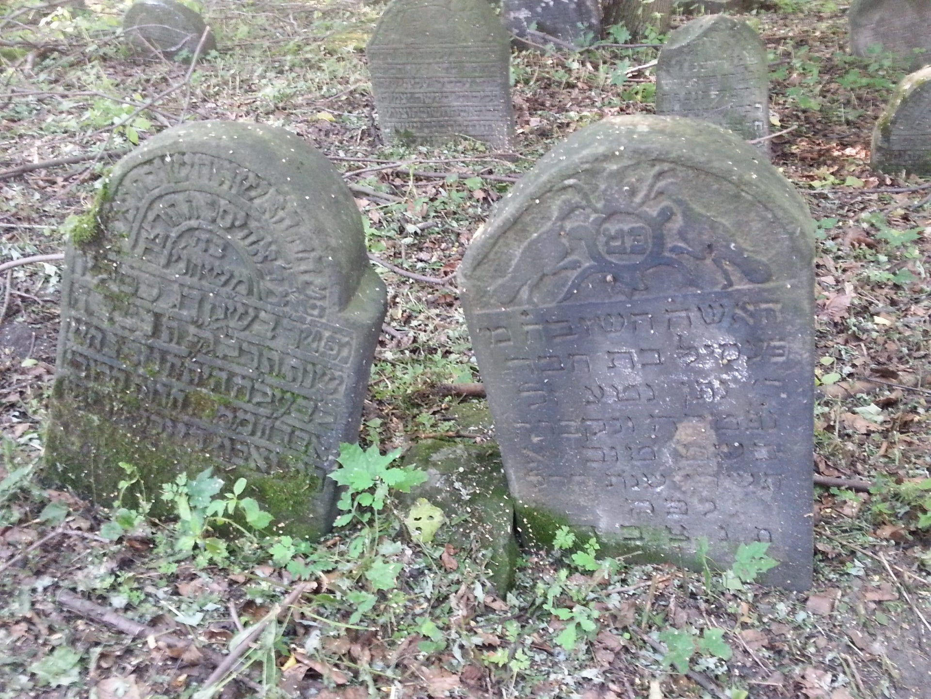 A Jewish cemetery in Poland.
