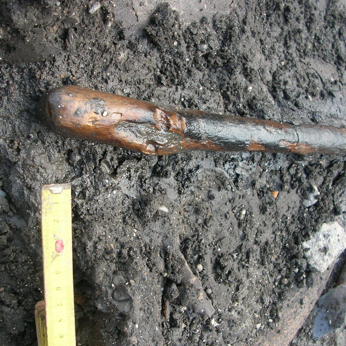 Burned film on the handle end of a 170,000-year old Neanderthal digging stick, found among straight-tusked elephant bones at Poggetti Vecchi, Tuscany