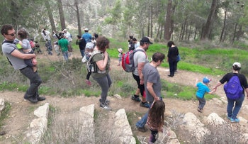 Families from the Jerusalem neighborhood of Beit Hakerem picking mushrooms in the Jerusalem Forest on Saturday.