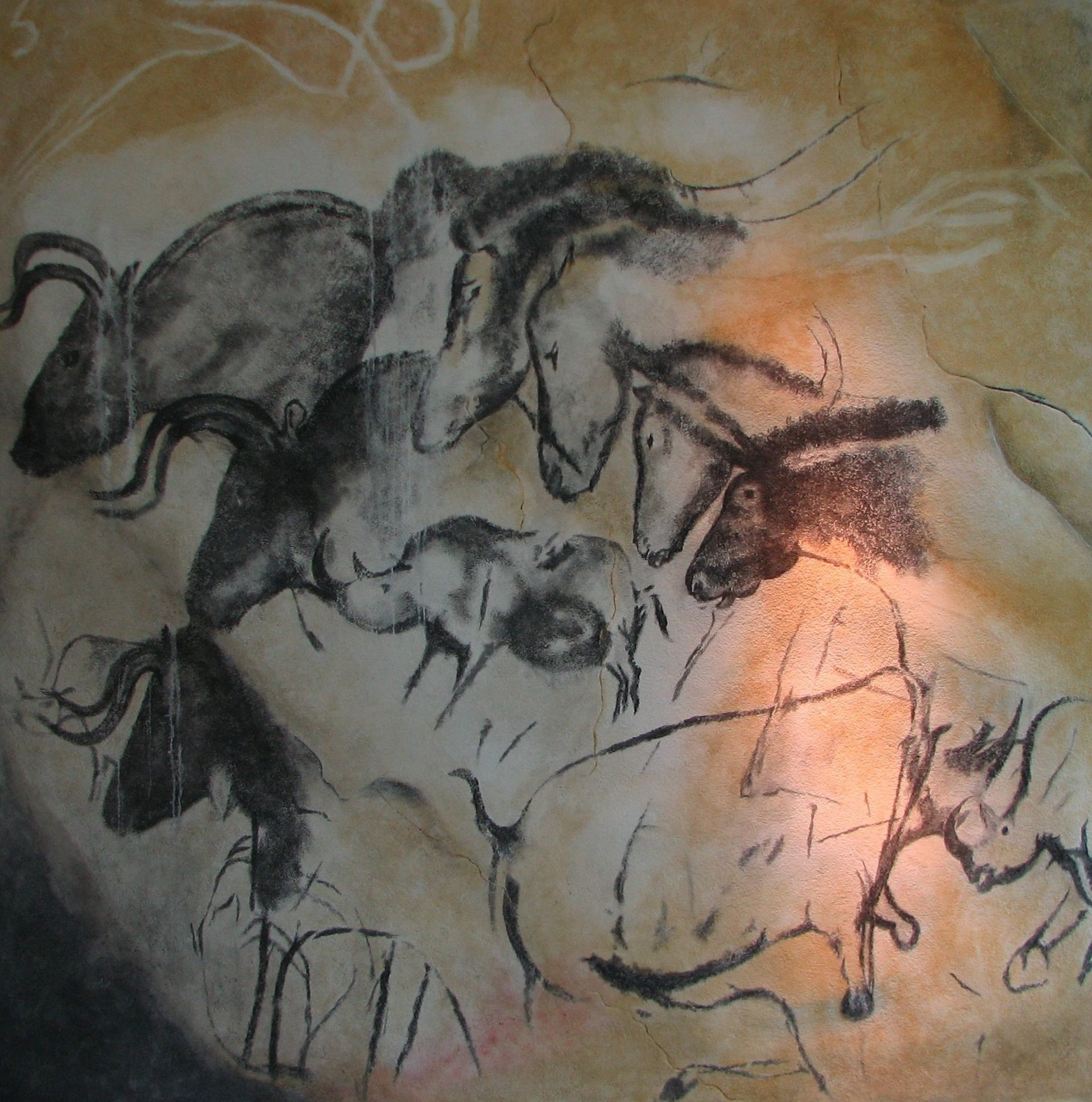 Replica at Brno Museum of the horses and rhinos painted by Homo sapiens in Chauvet Cave, France, around 30,000 years ago