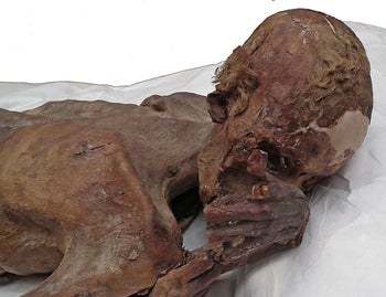 The male mummy known as 'Gebelein Man' can be seen in this photograph issued by The British Museum in London, Britain.