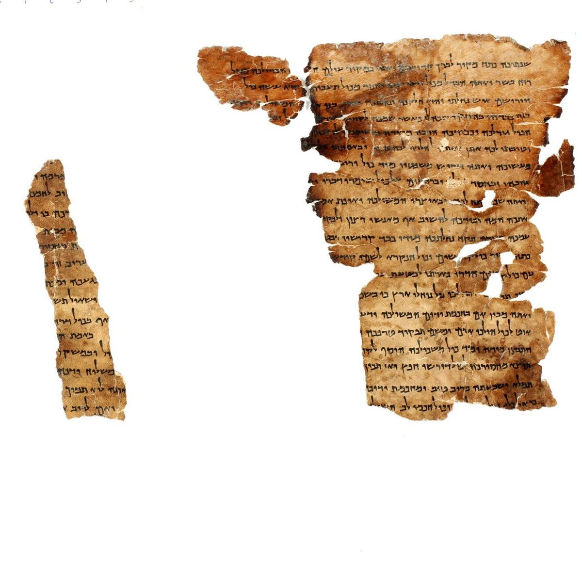 Fragments of Musar LeMevin, with raz nihyeh: Lectures on morality for learned disciples, as conveyed by God himself to the sages. Picture shows four pieces of Dead Sea Scroll going on display in Denver for the first time.