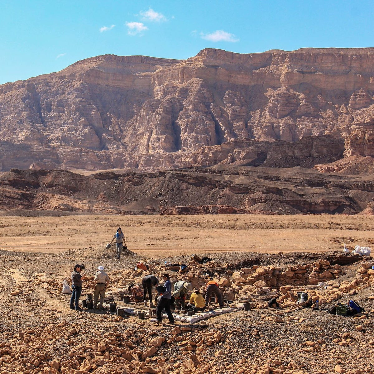 Archaeologists uncover remains of an Edomite copper production facility on the so-called Slaves' Hill in Timna. The dark stones that cover most of the site are slag left over from the smelting process