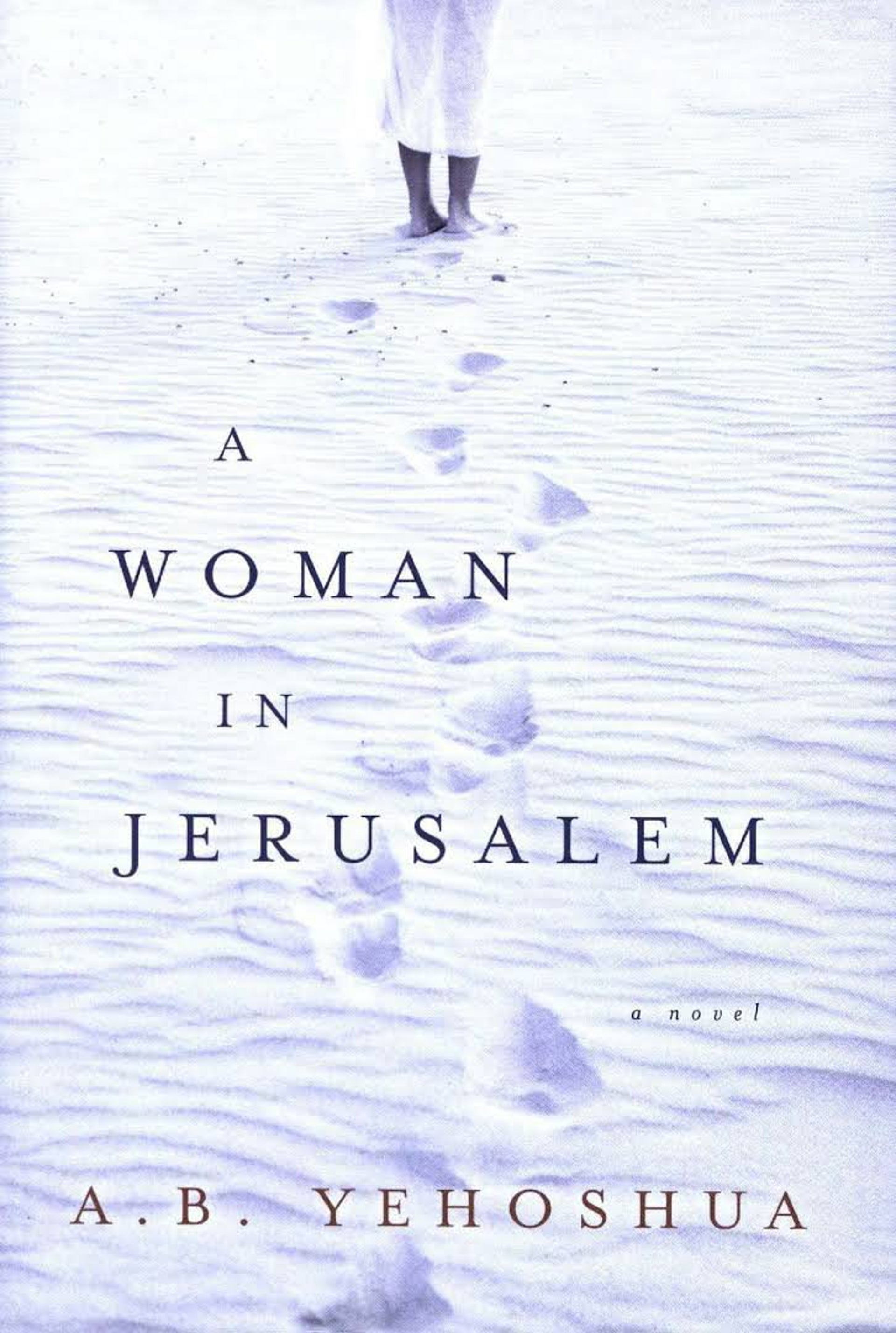 a book by A.B. Yehoshua