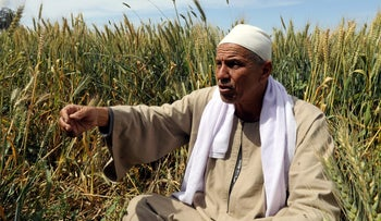 Farmer Mohamed Abdelkhaleq speaks during an interview with Reuters in a field in the Beheira Governorate, north of Cairo, Egypt April 4, 2018.