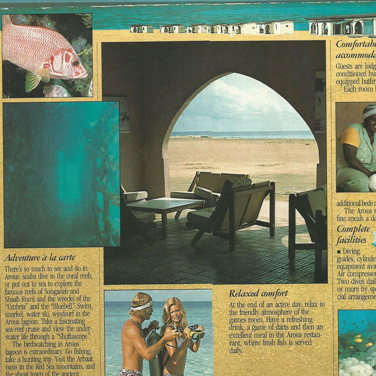 The Arous brochure for European tourists.