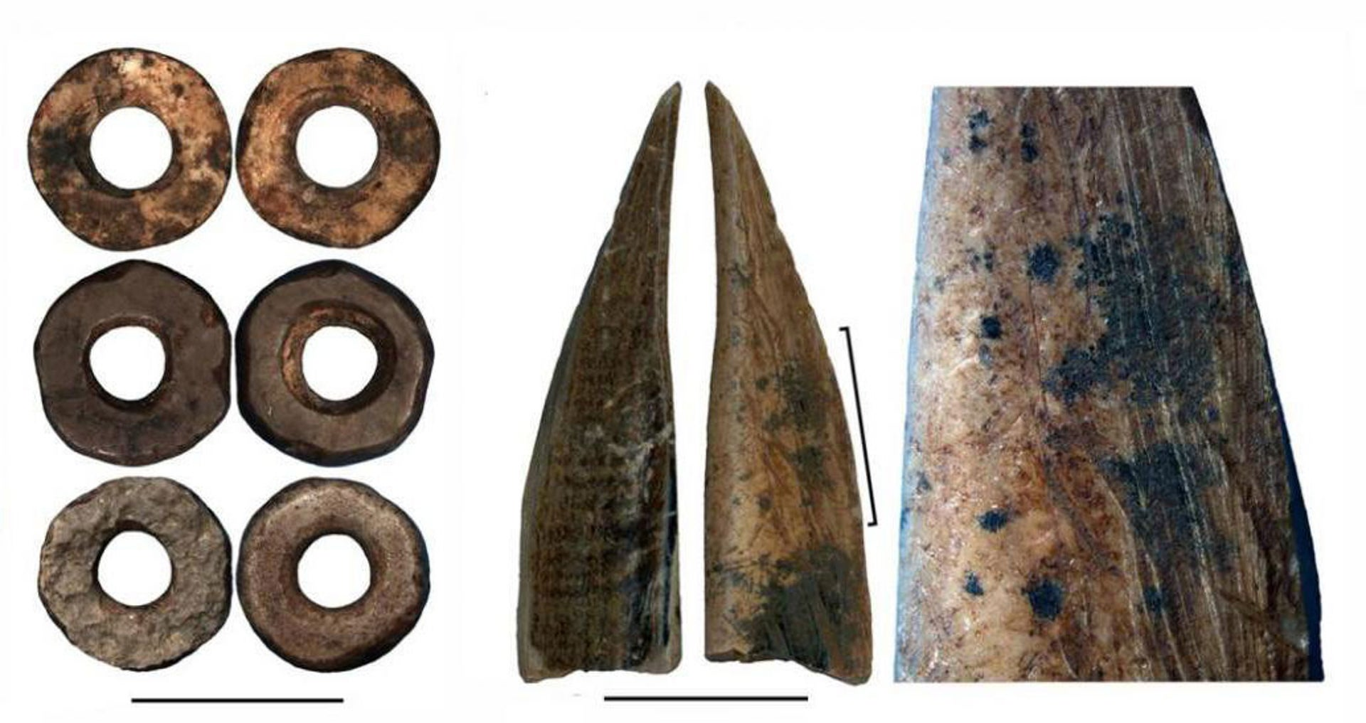 Ostrich eggshell beads, bone tool, and close-up of the bone tool showing traces of scraping.