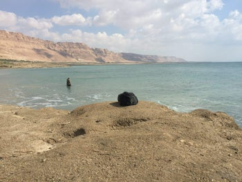 "The 3D-printed hair of Iranian artist Morehshin Allahyari, placed on the shores of the Dead Sea by an ""agent"" recruited to the cause."