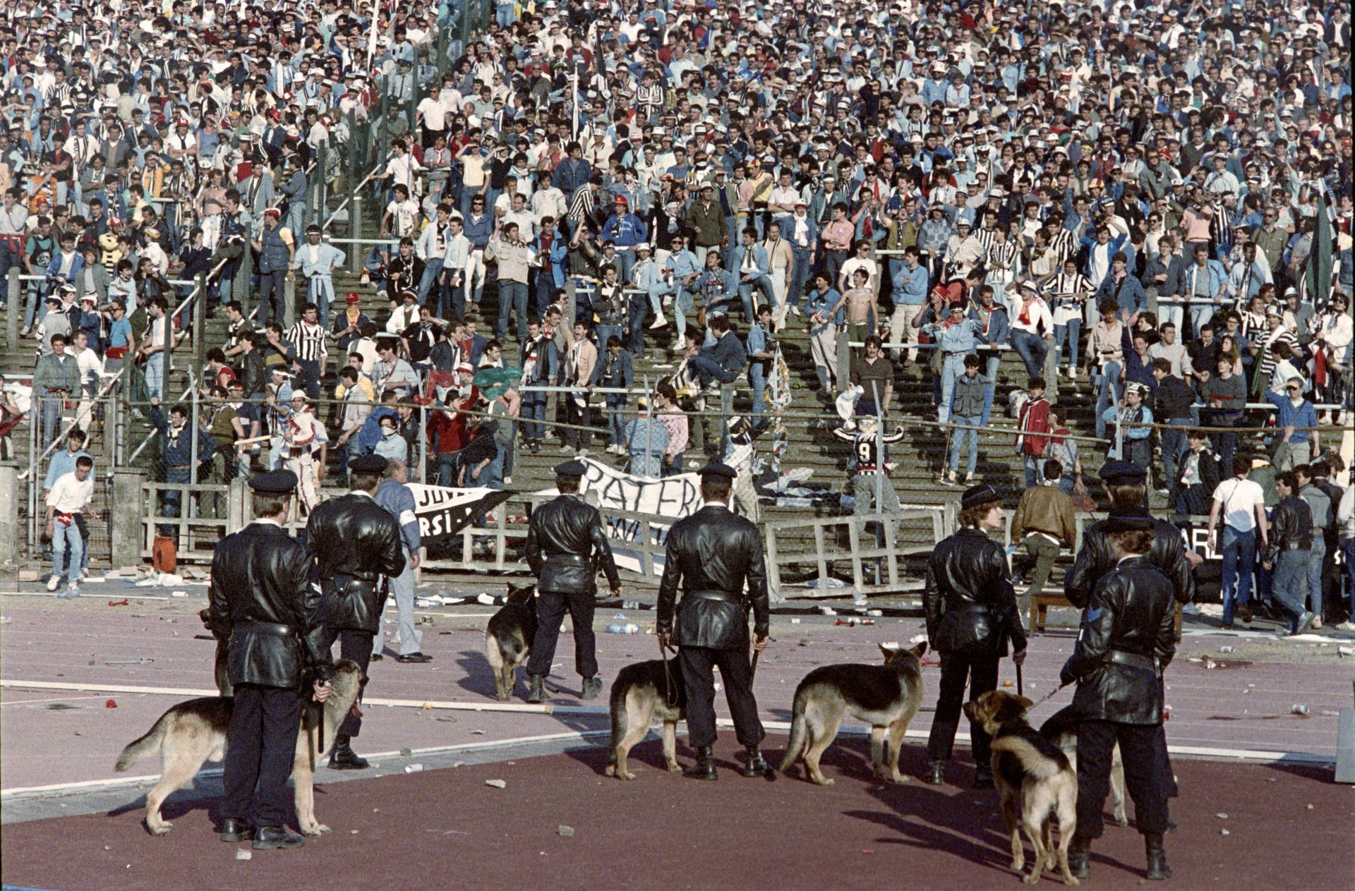 Belgium policemen with dogs face Italian fans, on May 29, 1985 in Heysel stadium in Brussels, as violence has broken out one hour before the European Champion Clubs final between Britain's Liverpool and Italy's Juventus of Turin