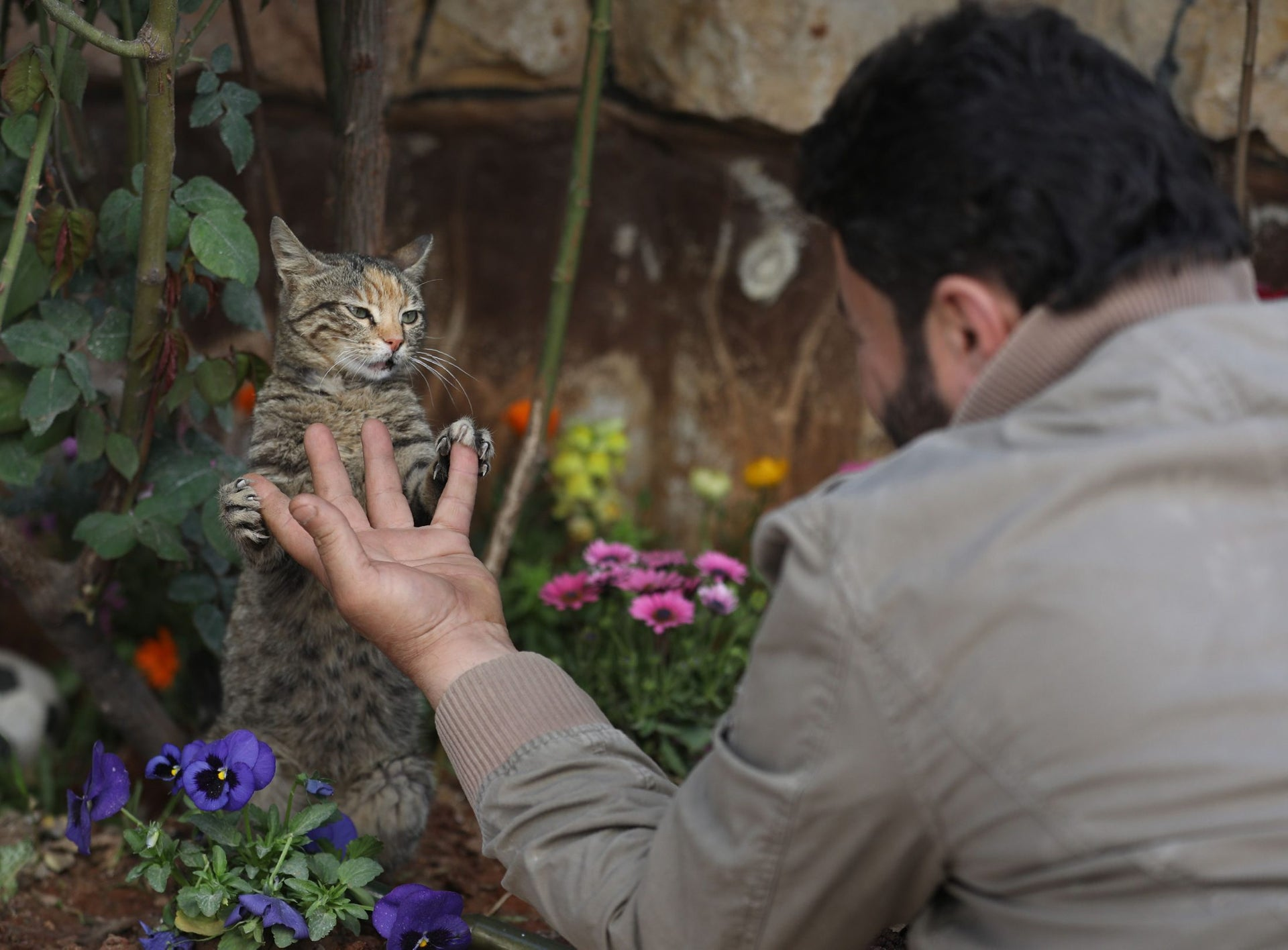 Mohammed Alaa al-Jaleel plays with a cat at Ernesto's Cat Sanctuary that he runs in Kfar Naha, an opposition-held town in Aleppo province in Syria on March 17, 2018.