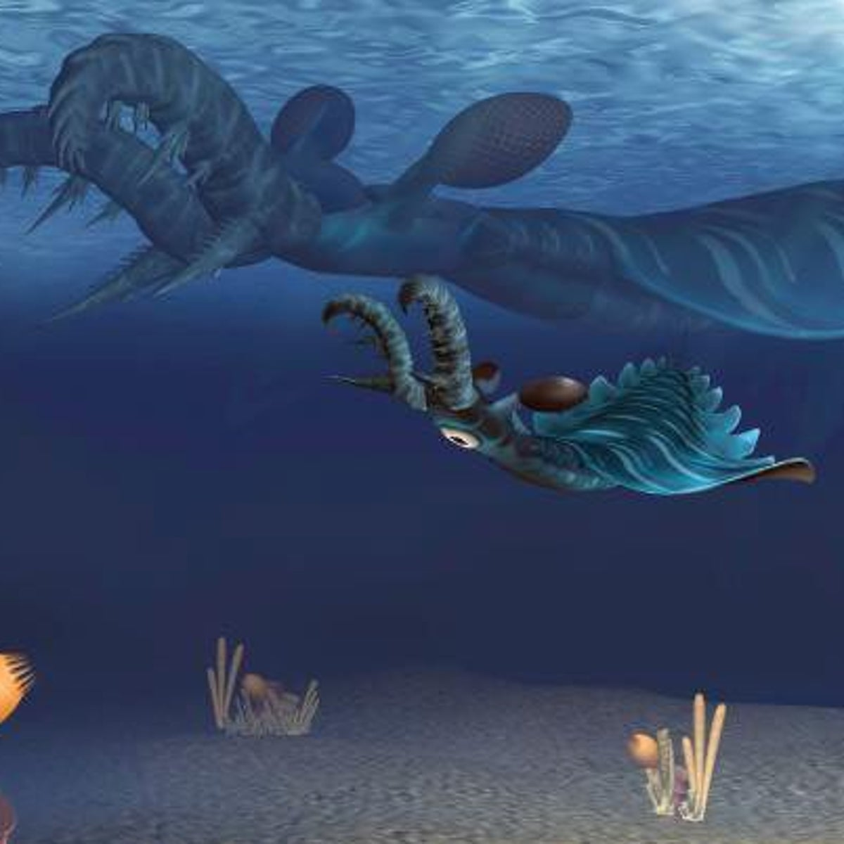 This is an artistic representation of juvenile (foreground) and adult (background) Lyrarapax unguispinus hunting in the water