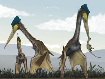 Quetzalcoatlus northropi. Harman's book intersperses the account of its evolution and extinction with the more recent story of John K. Northrop's never-produced design for the B-49 bomber.