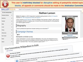 Nathan Larson has been engaged with Wikipedia and other wiki-based projects for over a decade. Illustration.