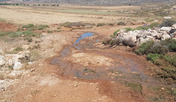 Raw sewage that flowed from the new West Bank settlement of Amihai into the fields of the Palestinian village Turmus Ayya, last week.