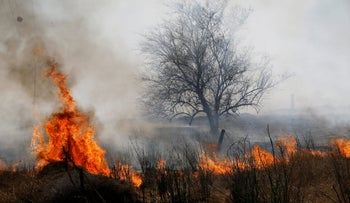 A fire burns in scrubland on the Israeli side of the border between Israel and the Gaza Strip, near kibbutz Or HaNer, June 3, 2018.