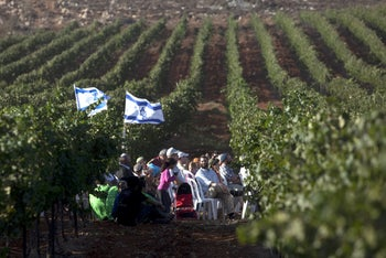 Jewish settlers sit in their vineyard in the West Bank settlement of Achiya. September 1, 2010