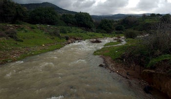 Illustration: Stream in the Golan Heights.