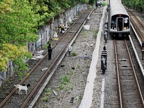 Goats stand on the subway tracks in the Brooklyn borough of New York. Jon Stewart has made a home for the two goats found roaming along the tracks, August 20, 2018.