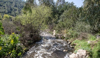 Nahal Sorek, where mosquitoes have been found to carry the virus.