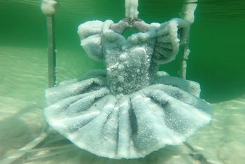 One of Israeli artist Sigalit Landau's pieces, a ballerina's tutu covered in salt crystal formations, is seen submerged in the hyper-saline waters of the Dead Sea, Israel August 30, 2018.