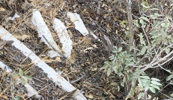 Asbestos shards at JNF's Mount Eitan campground, posted on Facebook on September 27, 2018 by Zachi Dvira, a camper who discovered the shards.