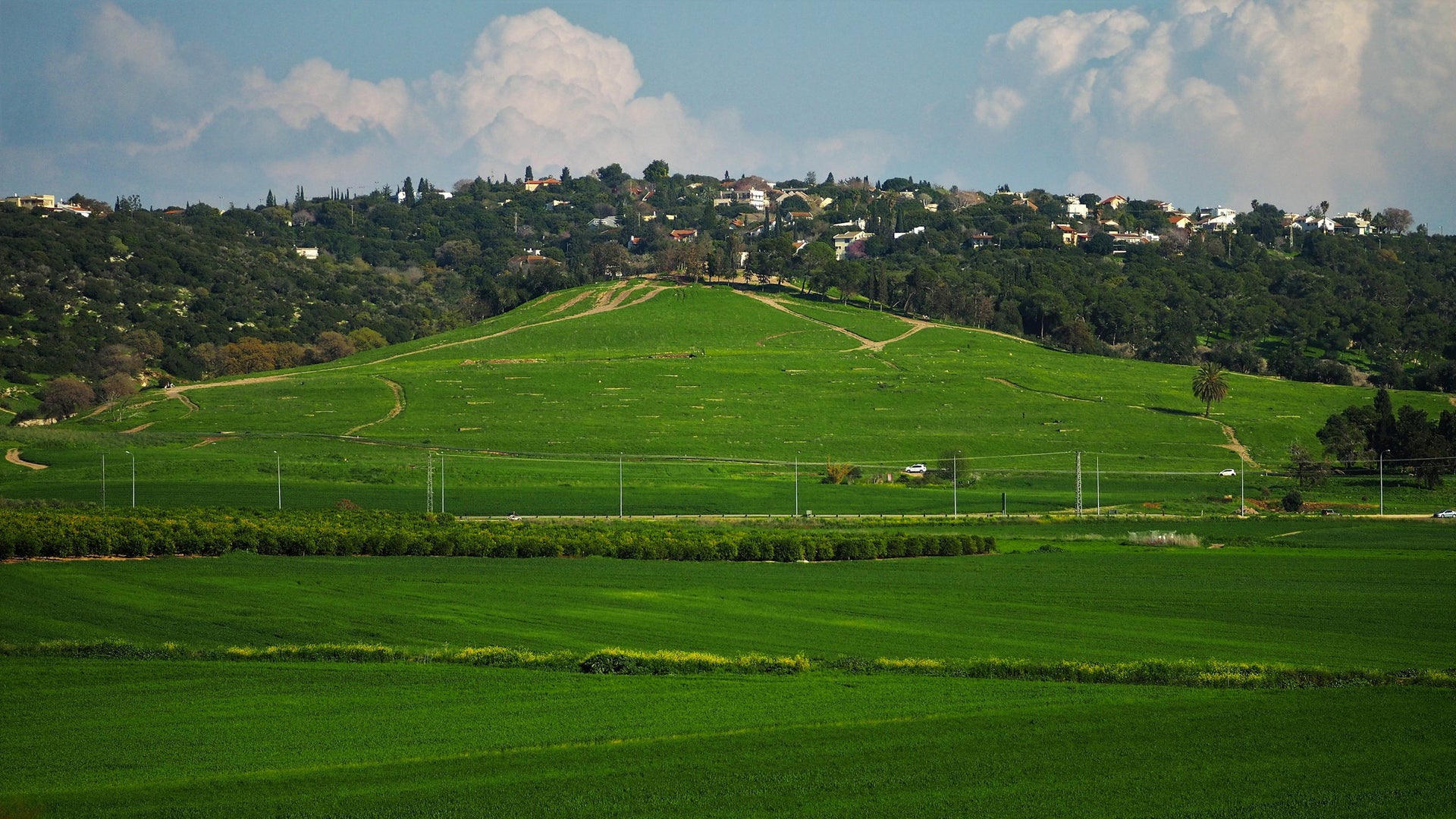 Tel Shimron, a gently sloping hill that hides the last major unexcavated biblical city in Israel.