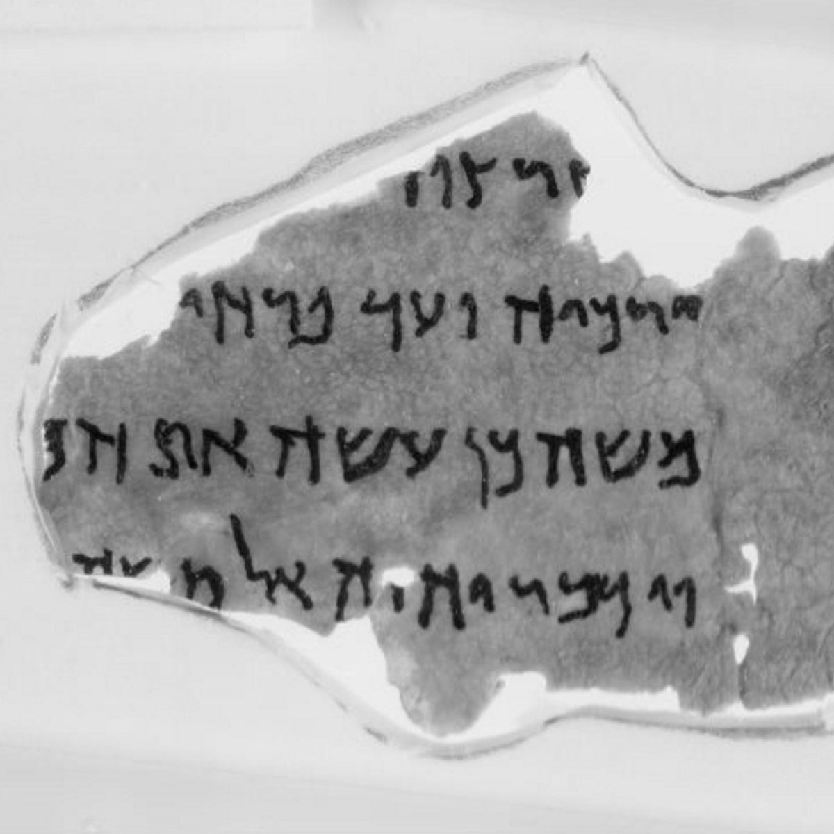 Fragment of ostensible Dead Sea Scroll, purporting to be from Numbers 8:3-5 is a forgery, the Bible Museum has admitted