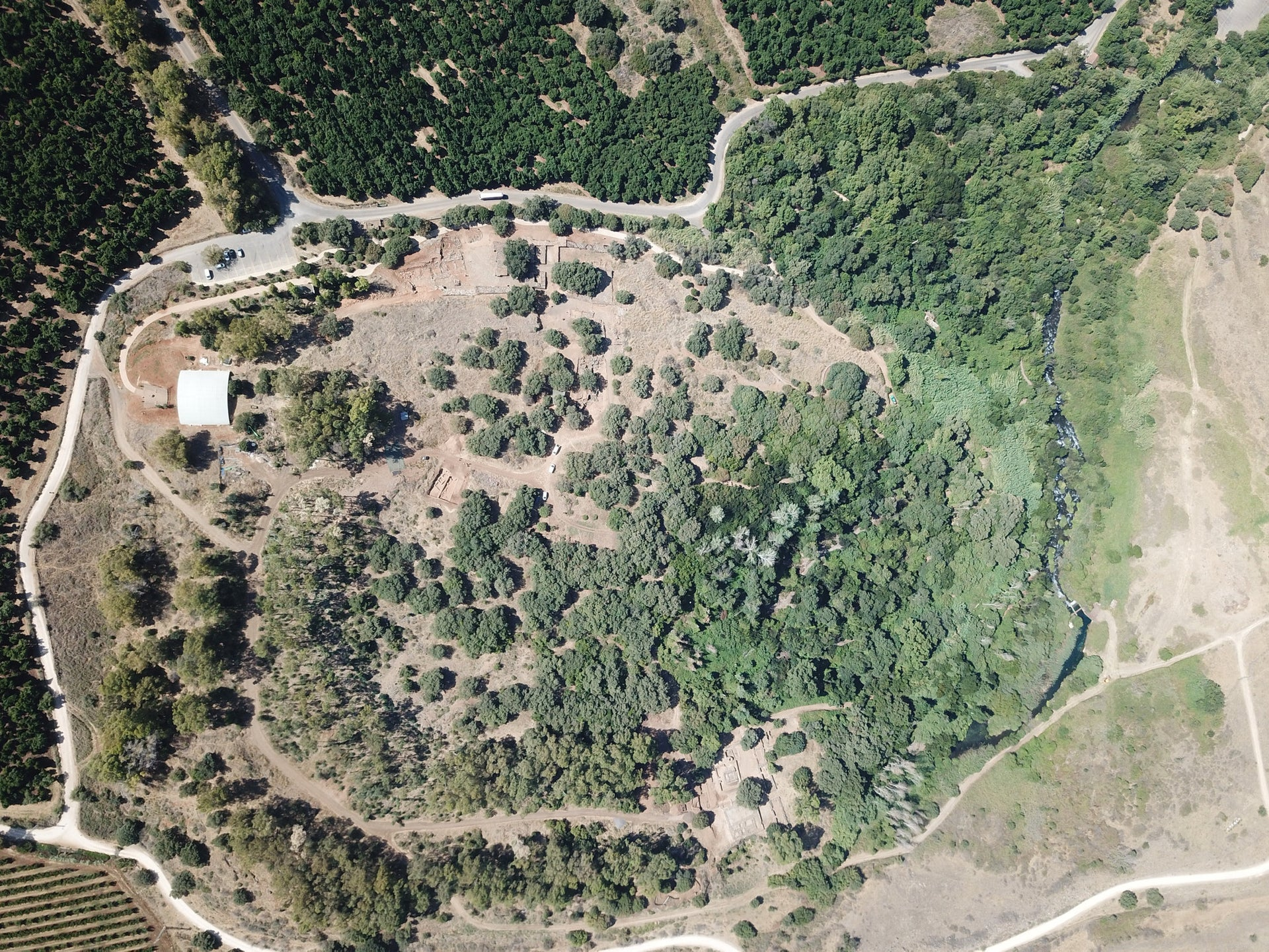 Aerial view of Tell Dan.