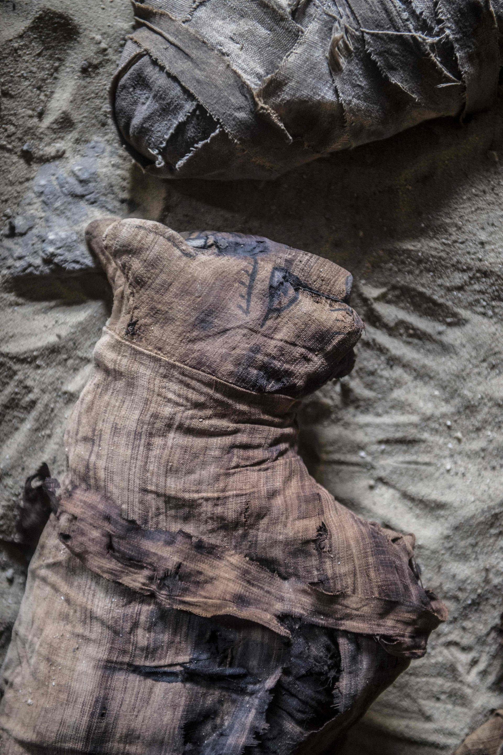 Mummified cats are seen at a new discovery made by an Egyptian archaeological mission during the demonstration of a new discovery made by an Egyptian archaeological mission through excavation work at the area located on the stony edge of King Userkaf pyramid complex in Saqqara Necropolis, south of the capital Cairo on November 10, 2018.