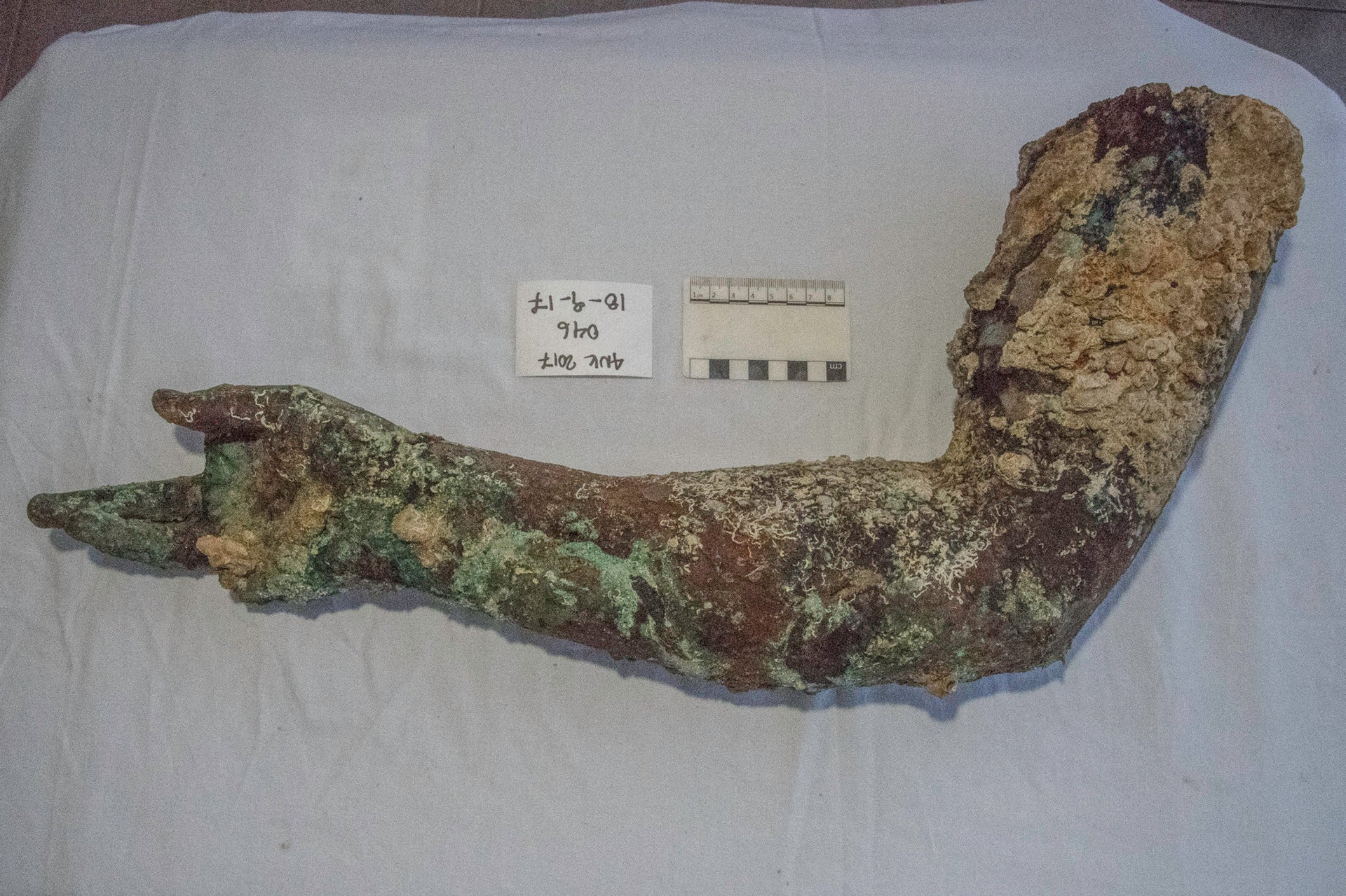 In 2017 the divers found this bronze arm at the wreck site